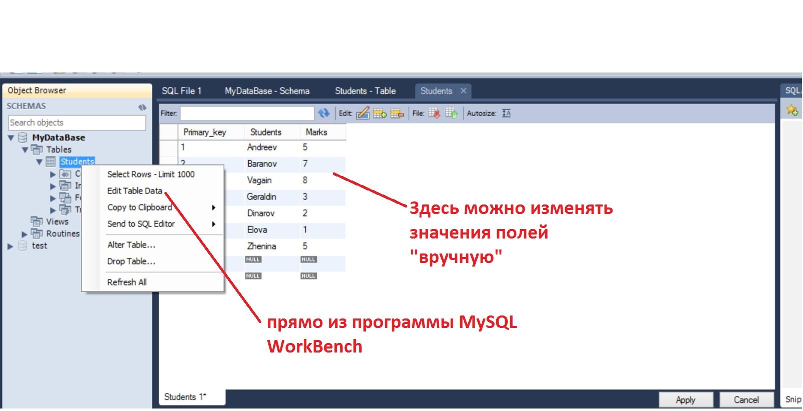 MySQL_WorkBench11